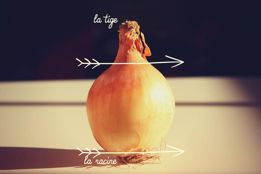comment-emincer-ciseler-oignon-techniques-de-cuisine