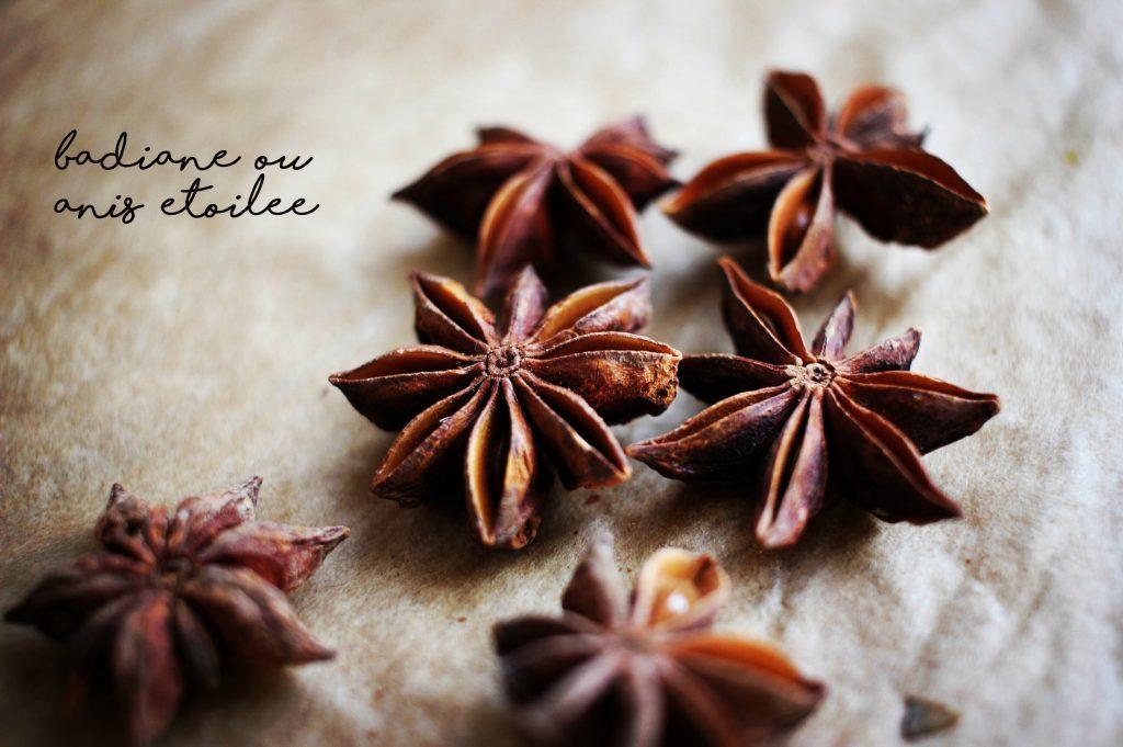 badiane-anis-etoilee-traduction-anglais-francais